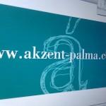 Arrimando el hombro con los vecinos de la academia Akzent Palma. Potenciando la convivencia en el barrio.
