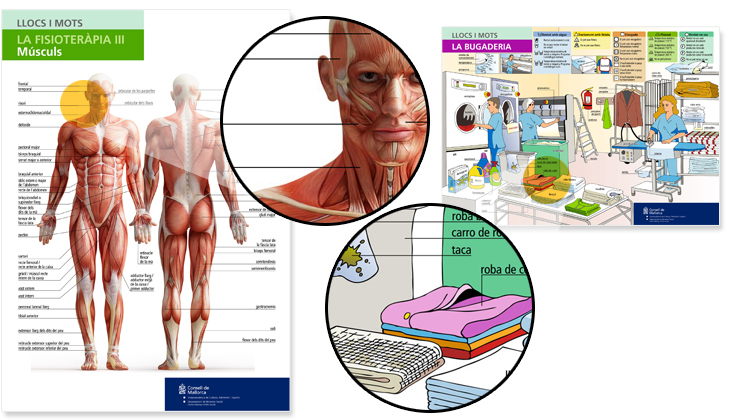 Material didáctico basado en ilustraciones para las residencias de pensionistas del Institut Mallorquí d'Afers Socials